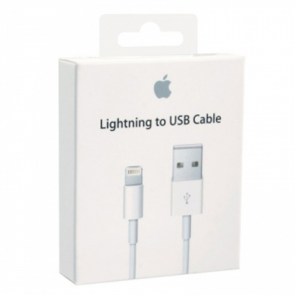 Apple USB Power Adapter (Euro) for iPhone 5/6/7 (MD813) (box)